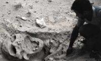 Цивилизация великанов - обычная культура земной истории или пришельцы