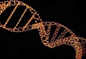 Геном человека, собранная инопланетянами ДНК