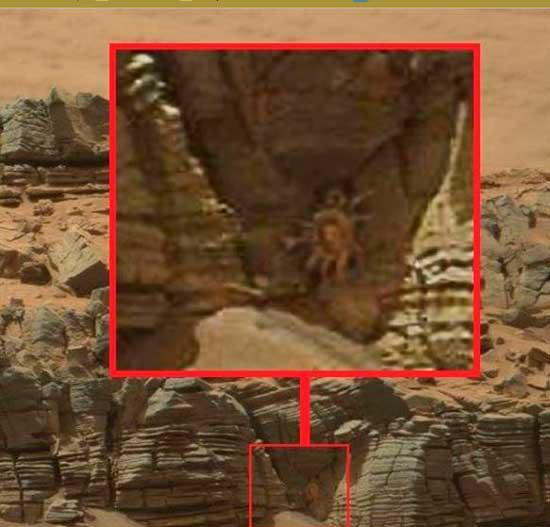 Марсианский краб, что за неведома зверушка охраняет вход