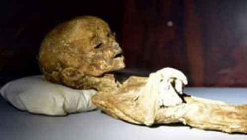 Пришелец, живший среди людей и умерший на Земле